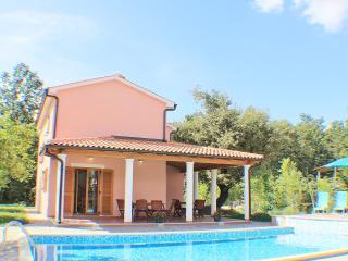TH00050 Istrian Villa Zminj - Zminj vacation rentals