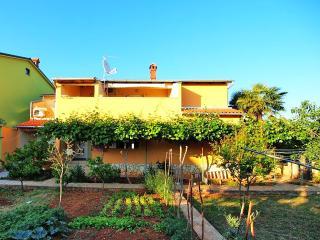TH00094 Apartment Drandic /Two bedrooms A1 - Barbariga vacation rentals