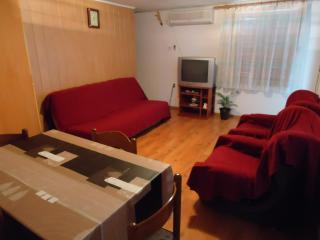 TH00208 Apartments Rampini / Two-Bedroom / Terrace - Svetvincenat vacation rentals