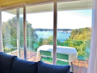 TH00193 Apartments Andrea / Three  bedroom A3 - Pula vacation rentals