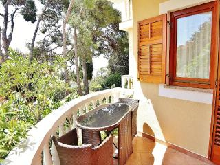 TH00218 Apartments Mira / One bedroom A2 - Banjole vacation rentals