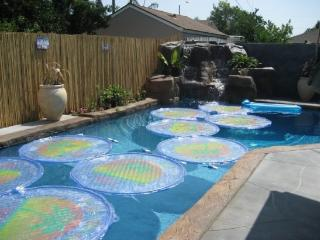 Private  Pool Waterfalls just walk to Disneyland - Anaheim vacation rentals