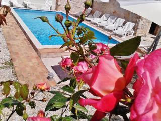 TH00246 Istrian Villa Orihi - Barban vacation rentals