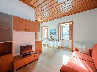 Carducci - 3437 - Ceresole - Ceresole Reale vacation rentals