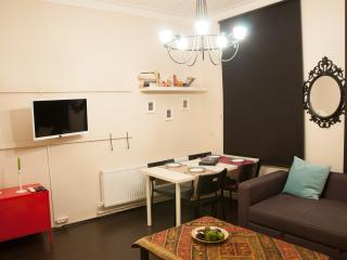 A flat that fusions history and comfort, in Galata - Istanbul vacation rentals