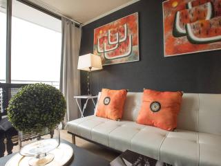 Nice , cozy, comfortable  2D 2 B awesome views A2 - Santiago vacation rentals