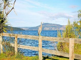 Blue Heron Lodge - New Zealand vacation rentals