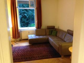 Two br apartment in city centre near Rhine - Basel vacation rentals
