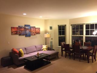 Spacious Modern two bedroom two bath in prime location - Boston vacation rentals