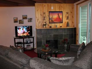 TH203B Lovely Remodeled Condo w/Wifi, Clubhouse, Mountain Views - Silverthorne vacation rentals