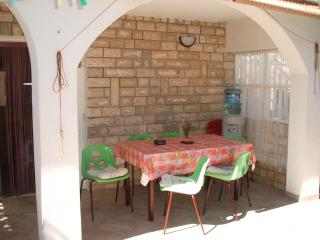 Apartment Vele 1 for 7 on the ground floor with AC - Vir vacation rentals