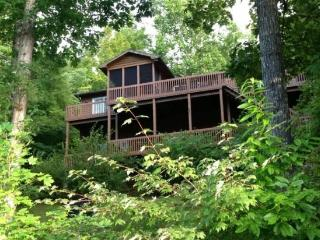 Just Relax in a beautiful lakefront vacation home on Norris Lake - La Follette vacation rentals
