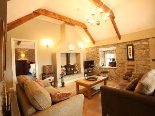 The Dairy Cottage Pocan - Nenagh vacation rentals