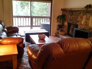 Four-bedroom condo in Tahoe, near beach and ski! - Nevada vacation rentals