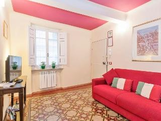 Heart of Lucca, historical center wifi 4/6 p. - Lucca vacation rentals