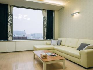 Gangnam Comportable Duplex studio #3 - Seoul vacation rentals