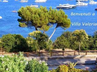 Villa Valeria - Cilento - Ogliastro Cilento vacation rentals