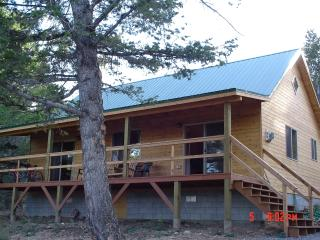 Large Family Cabin Near Yellowstone National Park - Dubois vacation rentals