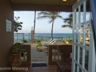 Beachfront Pelican Point AptD Right on Sandy Beach - Aguada vacation rentals