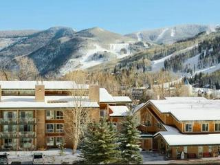 AMAZING MTN VIEW DEAL-SLEEPS 1-6! - Vail vacation rentals