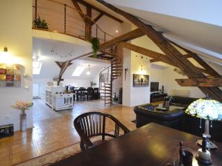 Attic Hastalska - Luxury three bedroom apartment - Prague vacation rentals