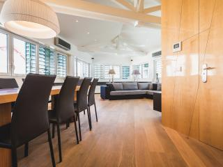 Luxury Penthouse Downtown - Steps from the Beach - Basque Country vacation rentals