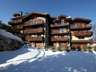 Courchevel Ski Chalet - Courchevel vacation rentals