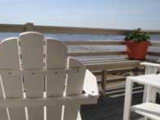 Deck View Seating - Spacious West End Waterfront, 3/2, Beach Access - Provincetown - rentals
