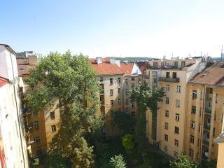 Spacious and Light Studio Room - Prague - Prague vacation rentals