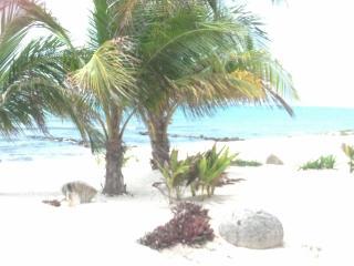 Villa de Paz - Tulum vacation rentals