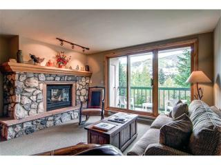 Borders Lodge - Lower 208 - Beaver Creek vacation rentals
