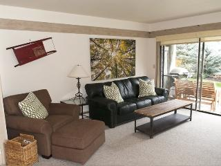 Greyhawk #24 - Warm Springs Newly decorated condo, Walk to the lifts; - Sun Valley / Ketchum vacation rentals