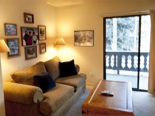 Edelweiss #121B, Warm Springs - economical one bedroom that sleeps 4 across from lifts - Ketchum vacation rentals