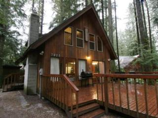 Snowline Cabin #35 - A pet-friendly country cabin perfect for couples and small families alike! - Glacier vacation rentals