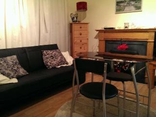 Dublin City Centre 1 Bed Apartment - County Dublin vacation rentals