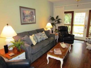 335 Palmetto Walk Villa - Wyndham Ocean Ridge - Edisto Beach vacation rentals