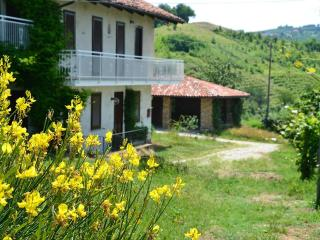 Luxury Stone Farmhouse:  Langhe-Italy, wine  area - Trezzo Tinella vacation rentals