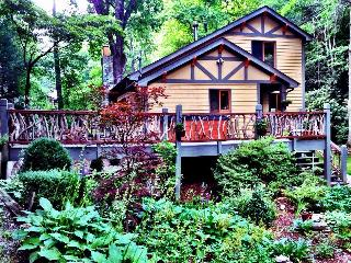 The Black Bear Lodge at Black Mountain - Old Fort vacation rentals