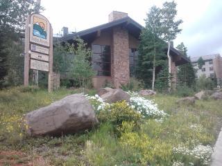 Cedar Breaks Lodge Studio Condo sleeps 4 - Brian Head vacation rentals