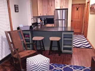 Gorgeous Remodeled Condo, Low Rates!  Next To Bus - Vail vacation rentals
