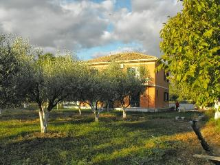 Spasmeni Vrisi apartments & studios - Kariotes vacation rentals