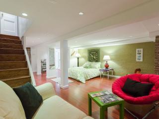 Spacious studio w/kitchen in D.C. Capitol Hill - Washington DC vacation rentals