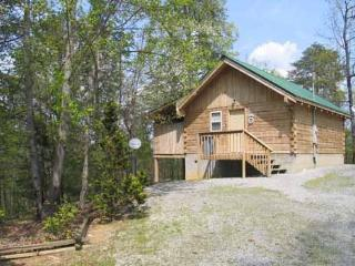 FOREVER YOURS - Sevier County vacation rentals