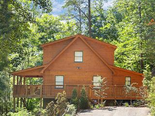 MICKEY'S PLAYHOUSE - Pigeon Forge vacation rentals