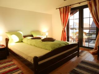 Double room in Transfagarasan Guest house - Cartisoara vacation rentals