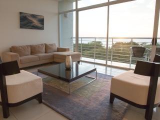 Luxury, Modern, Sunset + Ocean View Apartment - Tamarindo vacation rentals