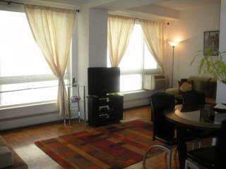 Lux,750sq,Bdwy/TimesSq(7)Jul19-Aug5-$225; Aug $250 - Manhattan vacation rentals