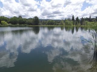 Bailey Creek Lodge-Waterfront-2 lakes-2 creeks - Shasta Cascade vacation rentals