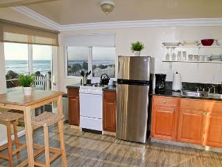 Remodeled Beach Rental, 1br/1ba, shared firepit, bbq, patio, on the ocean #9 - Fallbrook vacation rentals
