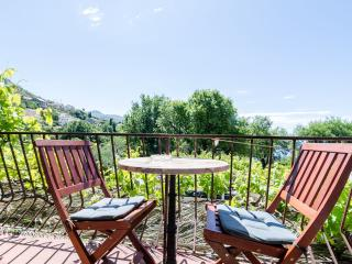 Apartments Tabain -  Studio with Balcony and Sea View - Mlini vacation rentals